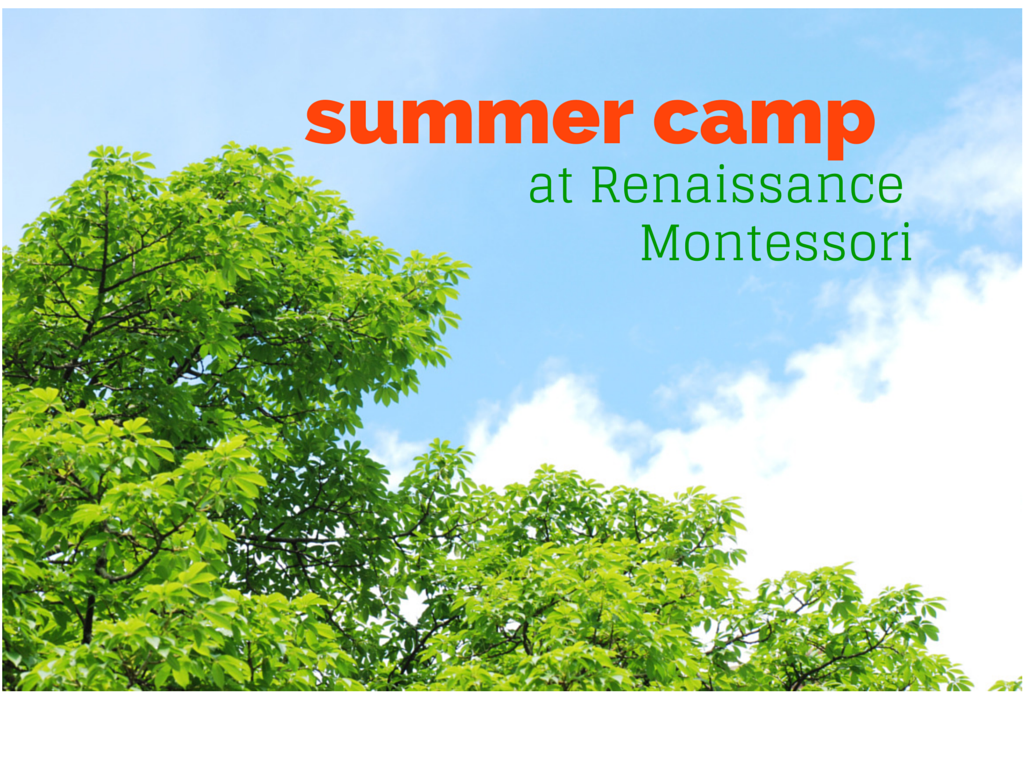 Summer Camps in weekly sessions
