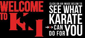KarateInternationalApex